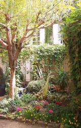 Auberge de l'Orangerie, 4 rue de l'Ormeaux, 84420, Piolenc