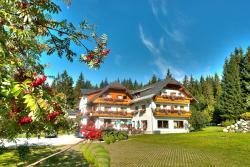 Alpengasthof Pension Fichtenheim, Vorberg 30, 8972, 拉姆绍达赫斯坦