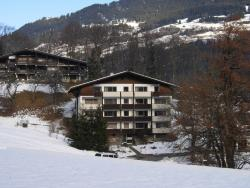Montafon Apartment, Kirchensteinweg 3, 6774, Tschagguns