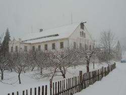 Penzion Selsky Dvur, Jablonova 678, 46361, Raspenava