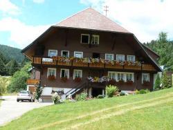 Gästehaus Klingele, Am Skilift 4, 79682, Todtmoos