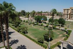 Assiut hotels Armed Forces, Fatih area / next to recruit armed forces / Assiut, 99999, Asyut
