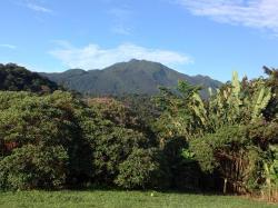 Cabinas Piuri, 800 Metros Norte Del Parque Nacional Volcán Tenorio, 21304, El Achiote