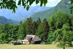 Ferienwohnung Alpenwiesen, Kalkgrubenstraße 25, 4820, バート・イシュル
