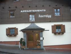 Appartement Auernigg, Imbachstraße 16, 5710, Kaprun