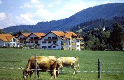 Appartements Alpenresidenz, Unteres Ösch, 87480, Weitnau