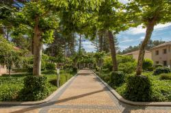 Confluent Health Resort, Poblado de Basta s/n, 46625, Cofrentes