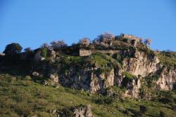 El Rincon de Carmen, Carretera Rute, Las Lagunillas Km.14, 300, 14960, Rute
