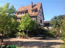 Gites la Cour Zaepffel, 19 Rue de la Paix, 67650, Dambach-la-Ville