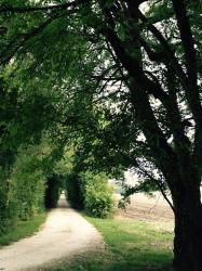 Domaine Le Rolant, Le Rolant, 24560, Montaut