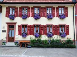 Haus am Bühl, Kirchbühlstraße 9, 79677, Schönau im Schwarzwald