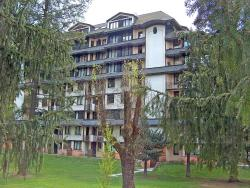Apartment Chamonix 3749,  74400, Chamonix-Mont-Blanc