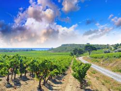 Farm Stay Narbonne-plage 4066,  11100, Narbonne-Plage