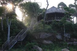 Monkey Maya Ream National Park, Ream National Park,, Phsar Ream