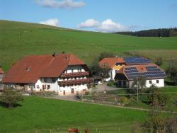 Stockerhof, Leimental 11, 79215, Elzach