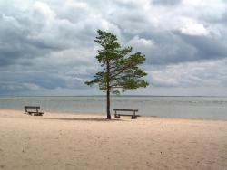 Hirve Holiday Home, Hirve talu, Mändjala küla, Kaarma vald, Saaremaa, Eesti, 93890, Mändjala