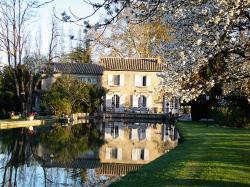 Domaine Du Moulin, Chemin de la Bégude 632, 30126, Saint-Laurent-des-Arbres