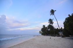 Canopy Cove, Arutha, Asaree Hin'Gun, Maalhos Island, 06060, Baa Atoll