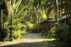 Mi Casa Hostel y Hotel El Tesoro, 2 kilometros de Puerto Viejo en direccion hacia Cocles, al lado de Tasty Waves, 00011, Cocles