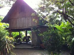 Cabuya Tours & Rentals, 25 m sur de Super Chicho, 60111, Cabuya