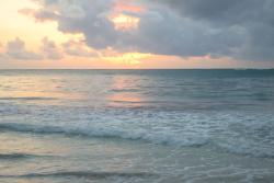 Shalom Cottages Diani, Forty Thieves Access Road n.n.,, Diani Beach