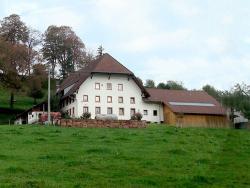 Kussenhof, Biederbacherstraße 2, 79261, Oberspitzenbach