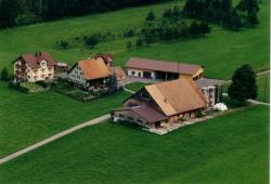 Bauernhaus Hinderfeld, Hinterfeld 1b, 6023, Rothenburg