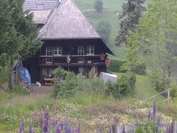 Gassenbauernhof, Rundweg 8, 79254, Hofsgrund