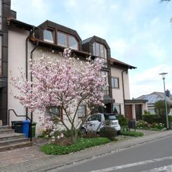 Ferienwohnung Unter dem Schwalbennest, Burgunderweg 1A, 67157, Wachenheim an der Weinstraße