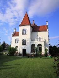 Villa Liduška, Křižíkova vilová čtvrť 538 Villa Liduška, 391 65, Bechyně