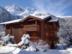 Les Alpages de Pralognan, Rue des XVIème Olympiades - Montée des Alpages, 73710, Pralognan-la-Vanoise