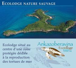Ankazoberavina, Isola di Ankazoberavina, 501, Ankazoberavina