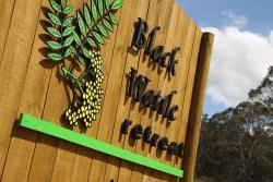 Black Wattle Retreat, 248 Black Wattle Road, 6567, Dewars Pool