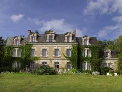Château des Tertres, 11 bis rue de Meuves, 41150, Onzain