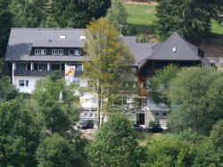 Apartment Altglashütten, Am Sommerberg 26, 79868, Feldberg