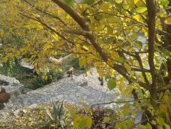 Skadar Country House, Rvasi, 20000, Doljane