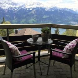 Apartment Seeblick mit Anbindung an ein 4-Sterne-Hotel, Hubel 114, 3803, Beatenberg