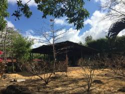 Monkeys Island Ometepe, de la hacienda merida 1 kilometro al sur o 10 minutos caminando,, Mérida