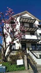 Hotel Enjoy, Klosterstrasse 70, 9403, Goldach