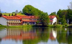 Appartement im Hotel-Gasthof zum Seebogen - Schmid Werner, Kummersdorf 101, 93474, Arrach