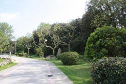 Apartament Maçanet de Cabrenys VF, Torras i bages 6, bajo 2º, 17720, Maçanet de Cabrenys