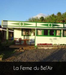 Ferme Du Bel'air, 209 Chemin Des Barrières, 97411, Le Guillaume