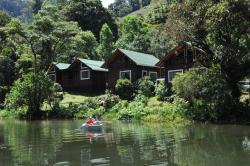 Sueños del Bosque Lodge, 1 km Suroeste de la Escuela La Lidia San Gerardo de Dota, 70403, Ángeles