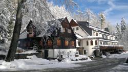 Hotel und Restaurant Köhlerhütte - Fürstenbrunn, Am Fürstenberg 7, 08344, Beierfeld