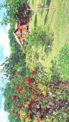 Maison de Bois, Lamirand sn, 24140, Jaure