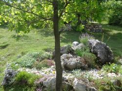 Privatni smještaj Romansa, Kralja Tomislava 9, 88260, Čitluk