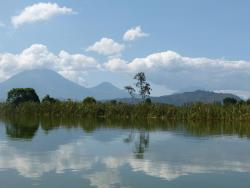 Bwindi Jungle Lodge, Robert Mugabe Road, Plot 2B, Kinawataka - Mbuya,, Nyakalembe