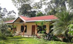 One World Bungalow in Rainforest Refuge, 3km norte de Cabinas Ole Caribe, 70403, Cocles
