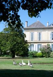 Le Château de la Presqu'ile, 174 Av de la Garonne, 33440, Peyronnet