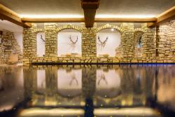 Aktiv & Spa Hotel Alpenrose, Silvrettastr. 45, 6780, Schruns